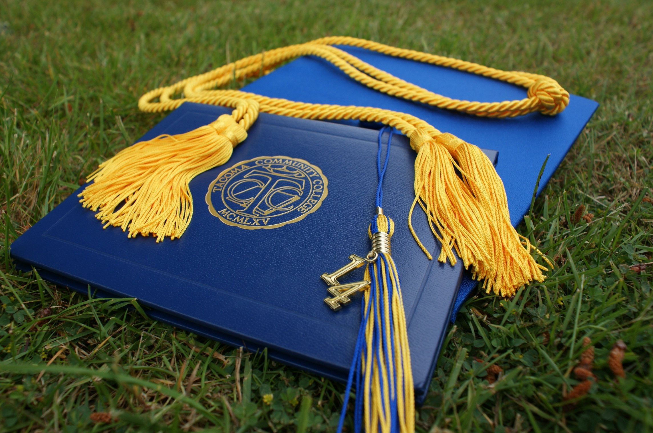 Blue diploma, mortar board and tassel resting on grass