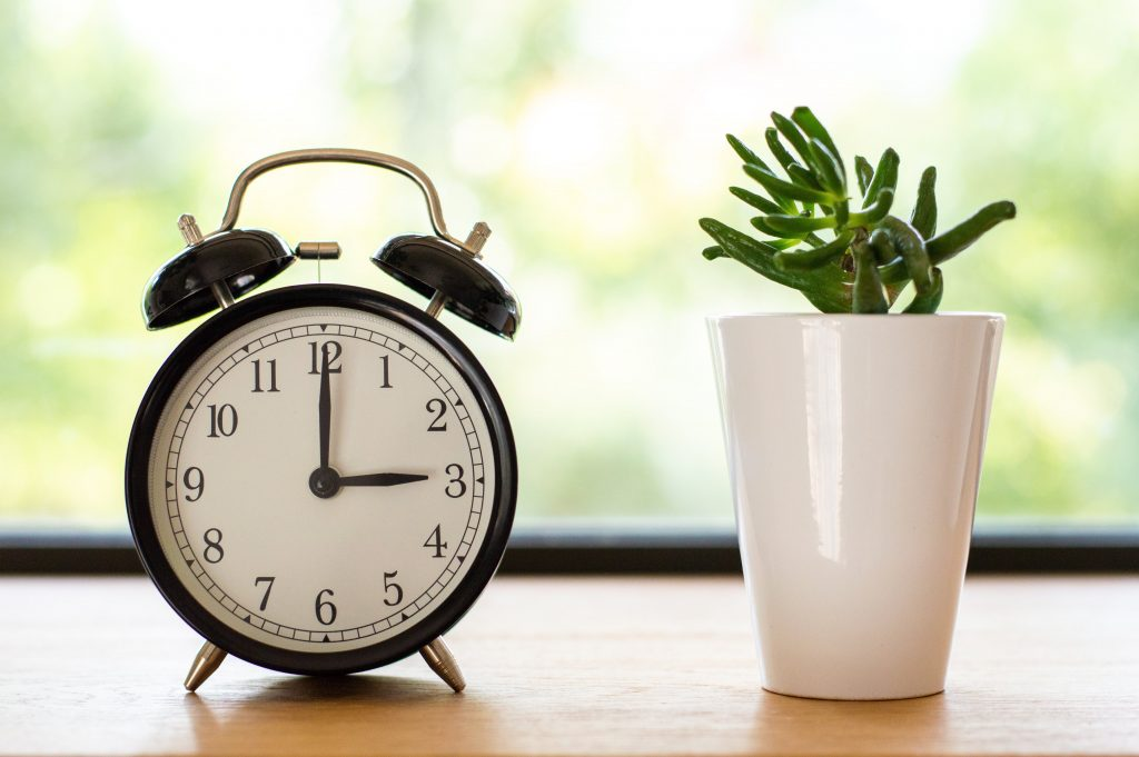 Alarm clock set to 3:00 next to a small plant in a white pot. These are challenging times.
